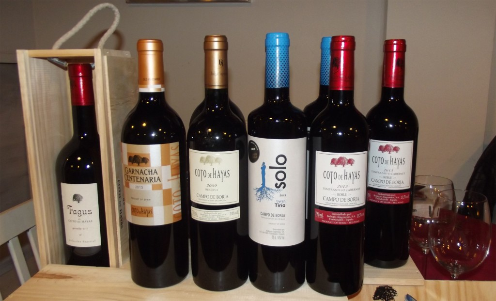 Vinos de Coto de Hayas en Vinoteo (Oviedo)