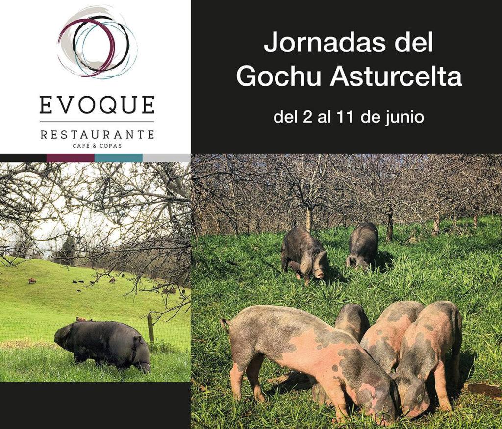 Jornadas del Gochu Asturcelta en Evoque (Lugones)